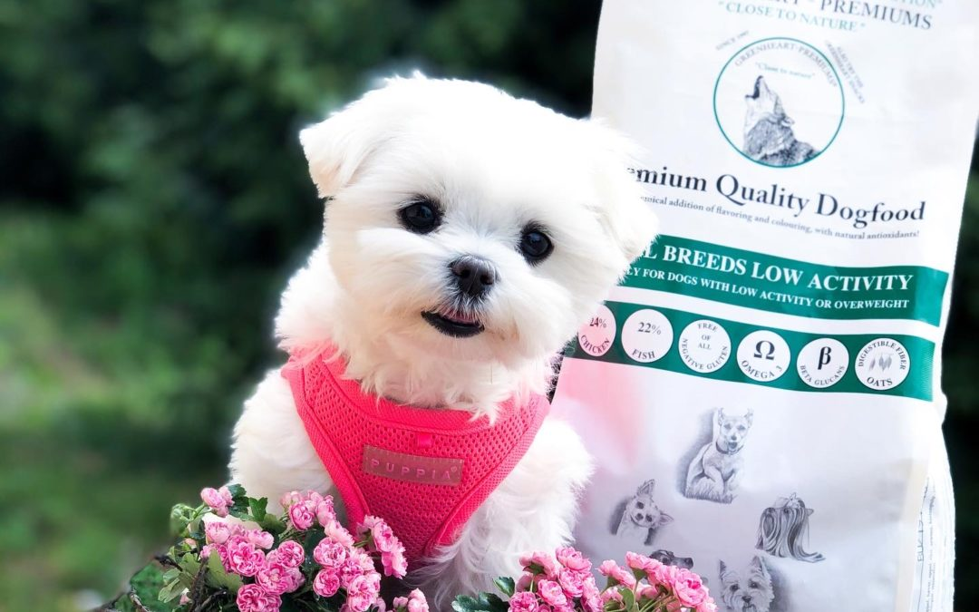 Karma okiem właściciela: Abi i Greenheart-Premiums Small Breed Low Activity